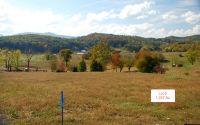 Home for sale: Lt5 Jack Groves Ln., Hayesville, NC 28904