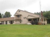 Home for sale: 7237 Lakeshore, Palms, MI 48465