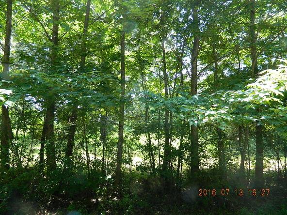 3.21 Acre Off Railroad St., Coal Hill, AR 72832 Photo 7