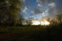 Home for sale: * Spruce Ln., Taos, NM 87571