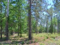 Home for sale: Lot 13 Watermark, Hortense, GA 31543