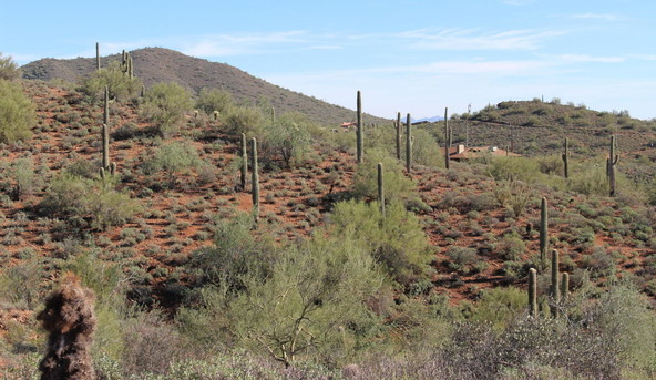41000 N. 7th St., Phoenix, AZ 85086 Photo 2