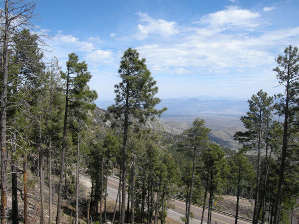 13067 N. Upper Loma Linda N, Mount Lemmon, AZ 85619 Photo 13