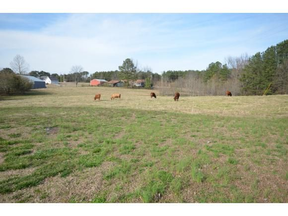 120 Co Rd. 420, Cullman, AL 35057 Photo 46