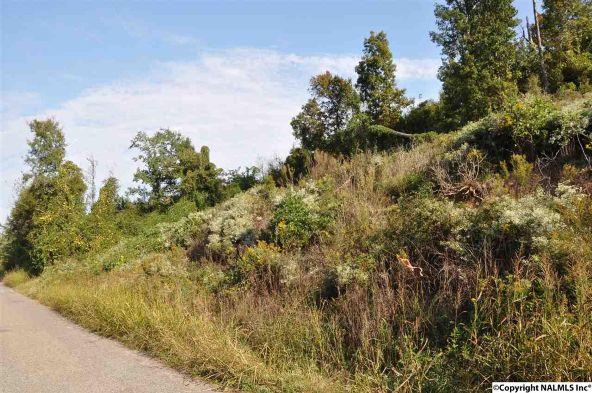 521 Nesmith Rd., Guntersville, AL 35976 Photo 3
