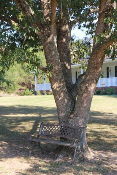 1135 Greasy Cove Rd. S.W., Eva, AL 35651 Photo 7