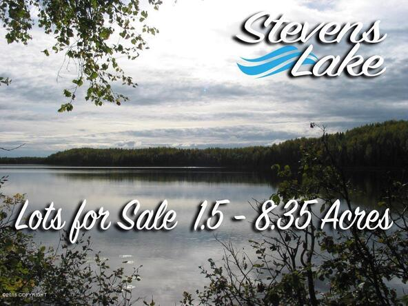 21362 W. Bow Tie Loop, Willow, AK 99688 Photo 22