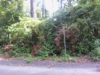 Home for sale: Lot#25 Second St., Santee, SC 29142