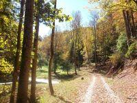 Home for sale: Tbd Belconey Ridge Rd., Roan Mountain, TN 37687