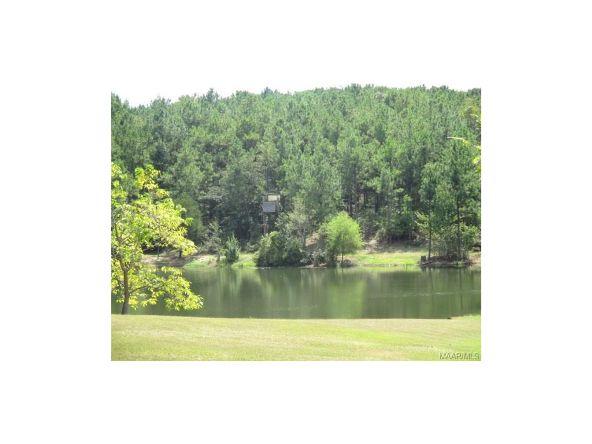 2134 County Rd. 66 ., Deatsville, AL 36022 Photo 36