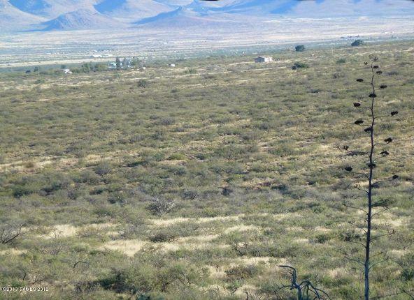 42 Ac S. Ghost Rider Rd., Portal, AZ 85632 Photo 4