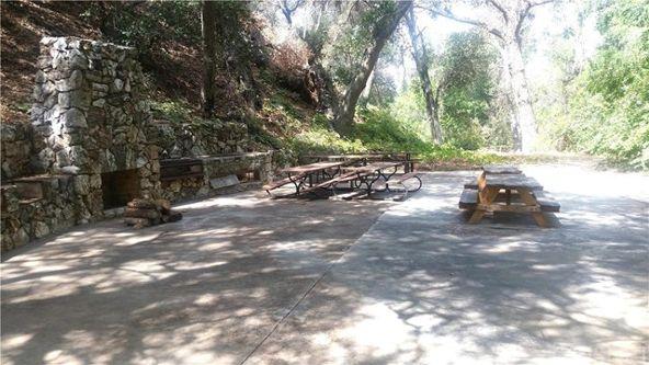 13136 Sierra, Agua Dulce, CA 91390 Photo 7