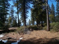 Home for sale: Lot 44, Fawn Lily, Shaver Lake, CA 93664