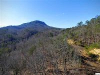 Home for sale: 1630 Seagle Hollow Rd., Sevierville, TN 37876