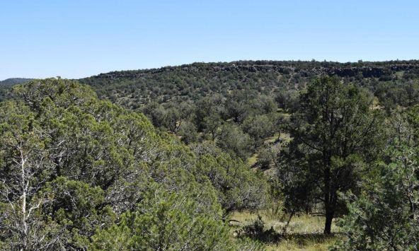 264 Sierra Verde Ranch, Seligman, AZ 86337 Photo 24