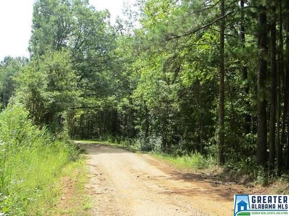 4.17 Acres Thomas Ln., Ashland, AL 36251 Photo 1