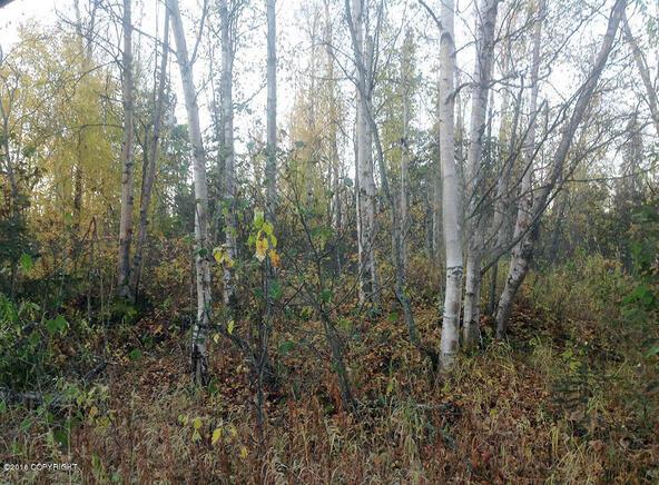 11158 W. Horizon Dr., Wasilla, AK 99654 Photo 3