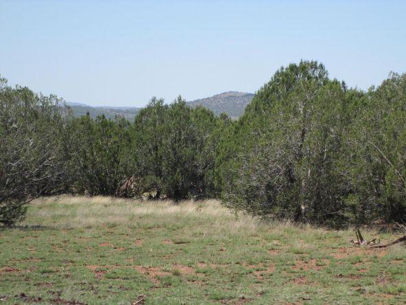 3328 N. Hillside Rd., Ash Fork, AZ 86320 Photo 41