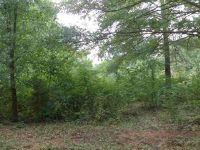 Home for sale: 00 Norbert Ln. Lot 196 Norbert Lane, Anderson, SC 29624