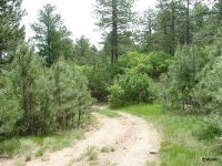 Home for sale: Tbd Tallhassee Ln., Canon City, CO 81212
