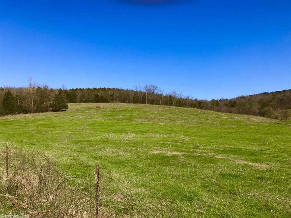 1252 Nc 3600 Rd., Western Grove, AR 72685 Photo 25