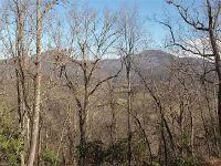 Home for sale: Lot 59 Frank Davis Rd., Waynesville, NC 28785