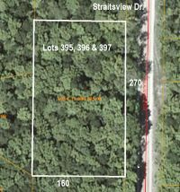 Home for sale: 14209 Straitsview Dr., Cheboygan, MI 49721
