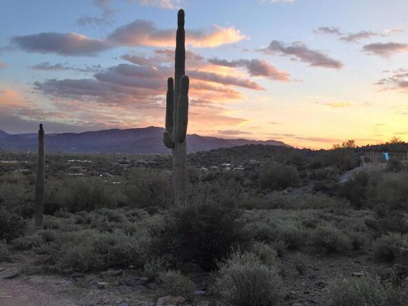 374xx N. Schoolhouse Rd., Cave Creek, AZ 85331 Photo 16