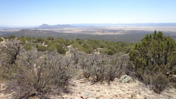 1104 Westwood Ranch Lot 1104, Seligman, AZ 86337 Photo 11