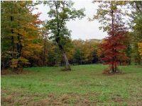 Home for sale: 46 Deer Point Dr., Dunlap, TN 37327