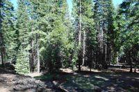 Home for sale: 672 E. Mountain Ridge Rd., Lake Almanor, CA 96137