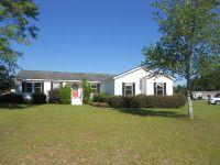 Home for sale: 115 Sweetbriar Ln., Ocilla, GA 31774