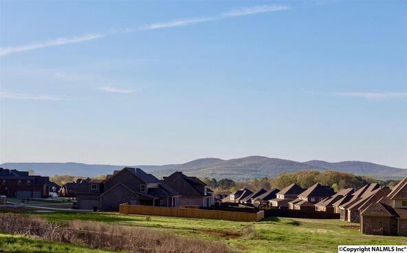 8015 Goose Ridge Dr., Owens Cross Roads, AL 35763 Photo 31
