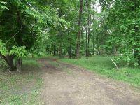 Home for sale: 260 Primrose Creek Dr., Heber Springs, AR 72543