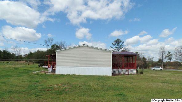 547 County Rd. 550, Grove Oak, AL 35975 Photo 19