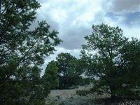 Home for sale: 5294 N. Indian Meadows Rd., Williams, AZ 86046