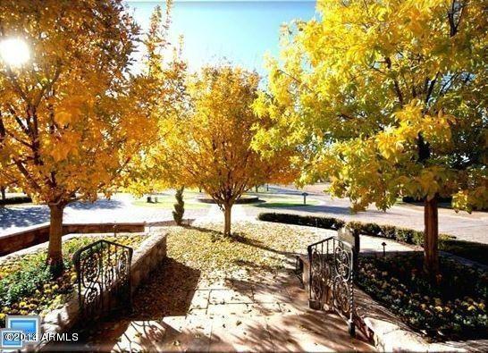 20281 E. Via de Arboles --, Queen Creek, AZ 85142 Photo 9