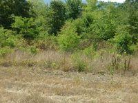 Home for sale: #7 Tract Nichols Ln., Delaware, AR 72835
