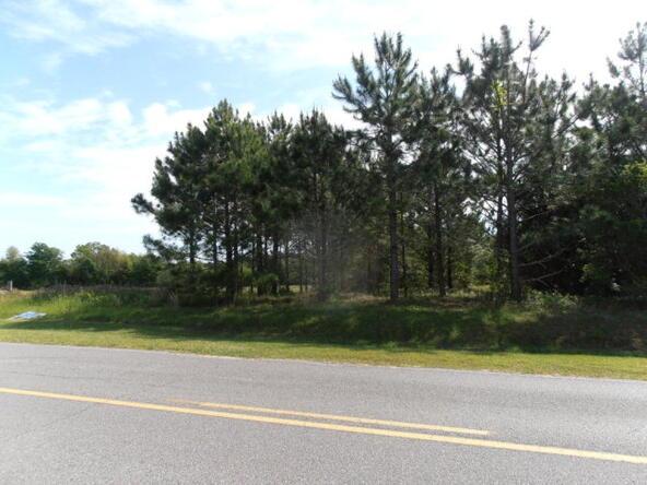 10630 County Rd. 91, Lillian, AL 36549 Photo 37