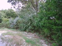 Home for sale: Lot 25 Pickett Ridge Ct., Kirbyville, MO 65679