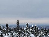 Home for sale: L14a B1v Leo Cir., Anchorage, AK 99516