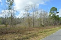 Home for sale: 0 State Rd. 50, Sylvester, GA 31791