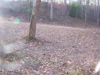 Home for sale: Lot 7 Pandora Fork Rd., Butler, TN 37640