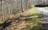 Home for sale: White Oak Dr. Lot, Hayesville, NC 28909