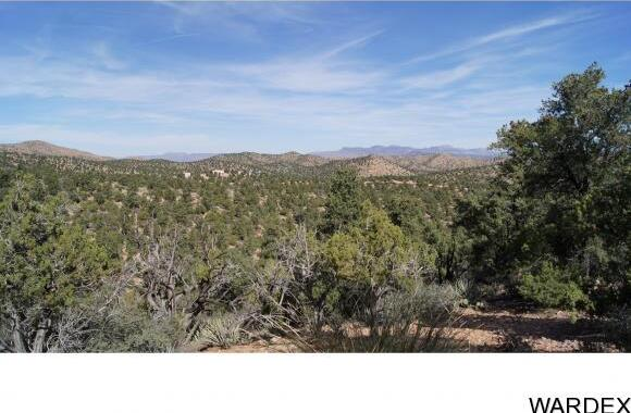 9999 N. Trap Springs Rd., Hackberry, AZ 86411 Photo 16