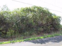 Home for sale: 94-6661 Kamaoa Rd., Naalehu, HI 96772
