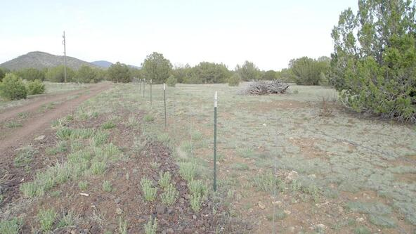 5665 N. Santa Fe Rd., Williams, AZ 86046 Photo 3
