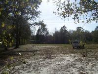 Home for sale: 16090 Cr 349, Mc Alpin, FL 32062