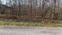 Home for sale: 202 Prestonwood Cir., Fairfield Glade, TN 38558