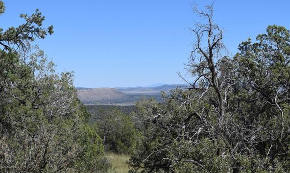264 Sierra Verde Ranch, Seligman, AZ 86337 Photo 15